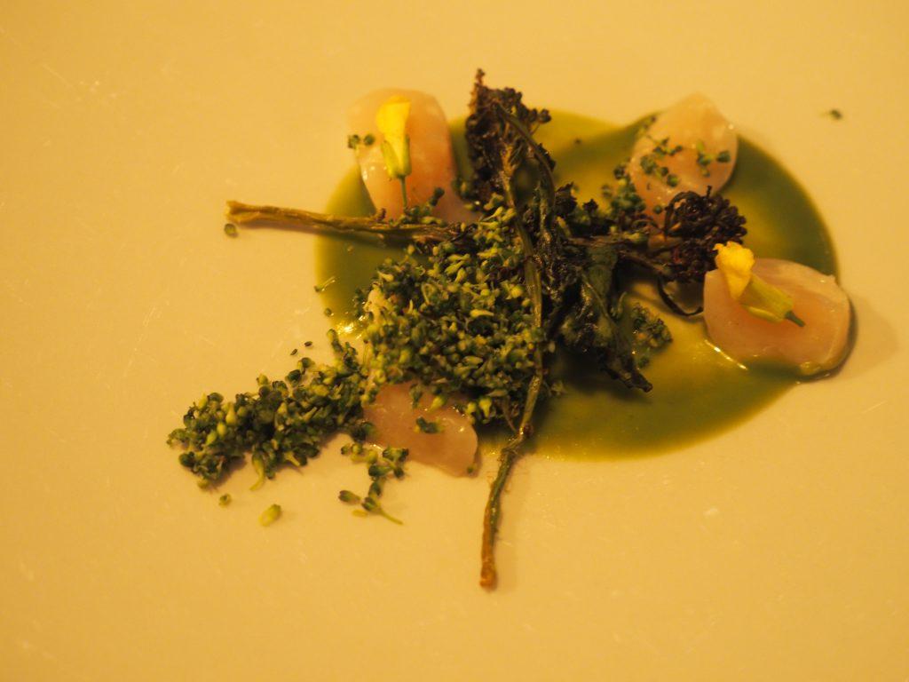 Kamskjell og brokkoli