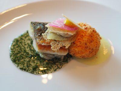 Makrell, skinkemousse og urtesaus